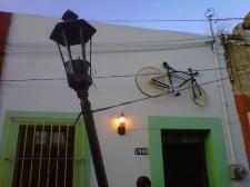 Caligari - Tour Gastronomico Mejor Santa Tere